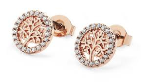 Tipperary Silver and Rose Gold Plated Cubic Zirconia Circle Studs